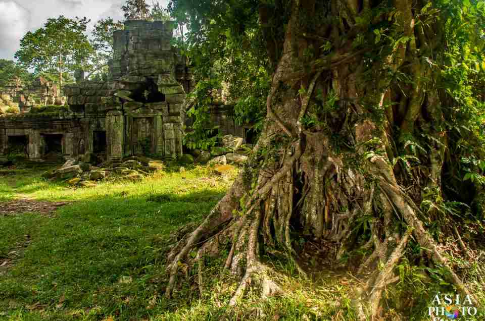 City of Angkor: Preah Khan