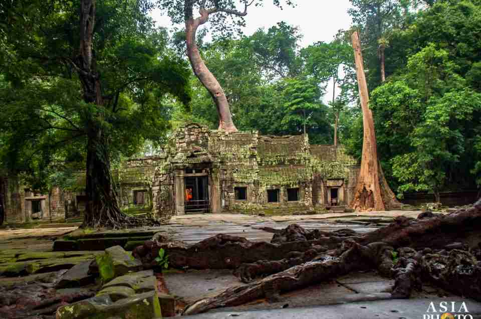 City of Angkor: Ta Prohm